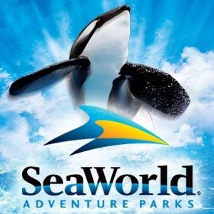 SEAWORLD ORLANDO ~ Day Trip ~ #Review #Sponsor