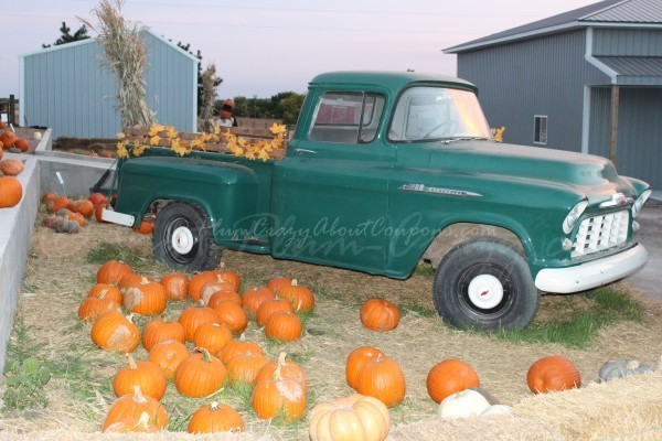Here is a list of some of the best pumpkin patches, corn mazes & Halloween Trains in the Eastern US.Check out our Western & Central US best pumpkin patches.
