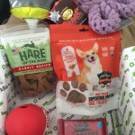 New toys & treats each month, BarkBox is the way to go. A monthly subscription box that arrives every month is the perfect way to honor your dog.