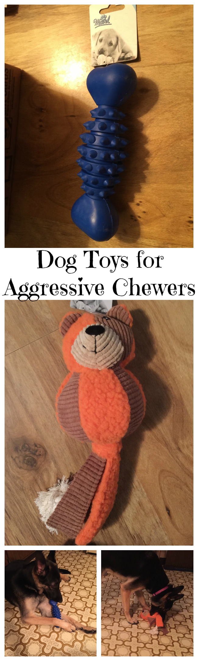 Dogs can never have too many toys. If your dog is like Harley, she goes through dog toys like crazy. Always trying to wreck them and ripping them apart.