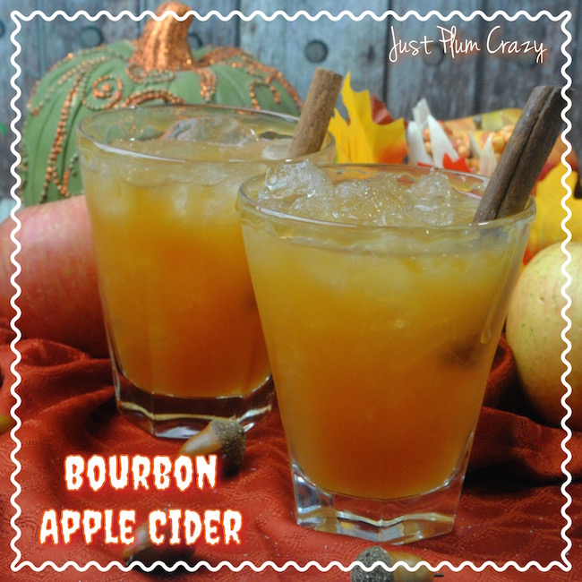 I know some of you are getting snow and the Bourbon Apple Cider Cocktail recipe is a nice adult beverage to sit around the fire with.