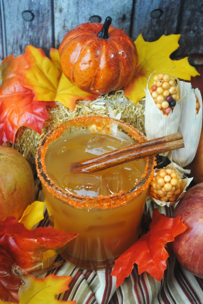 """Here's a little Fireball Apple Cider recipe that will surely warm you up on a cold crisp evening. And I don't mean """"warm"""" in the sense of microwave."""