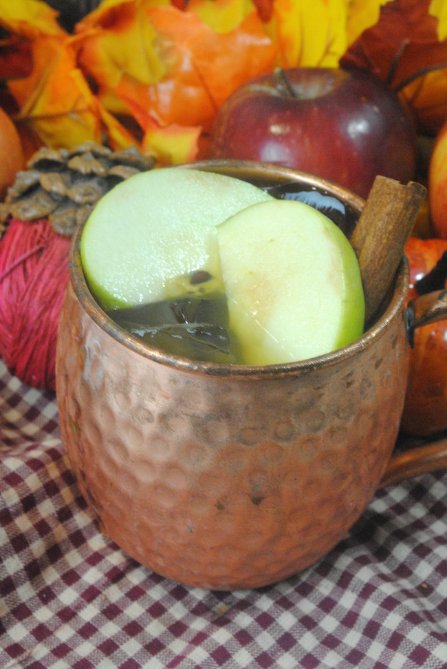 Who doesn't love a good old fashioned Moscow Mule Apple Cider Recipe? Well that's what we are sharing with you today and there is much more to come.