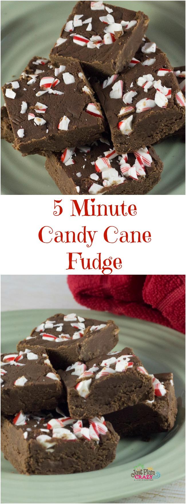 Why not make some quick & easy 5 Minute Candy Cane Fudge Recipe with your leftover candy canes for your New Year's Eve gathering.