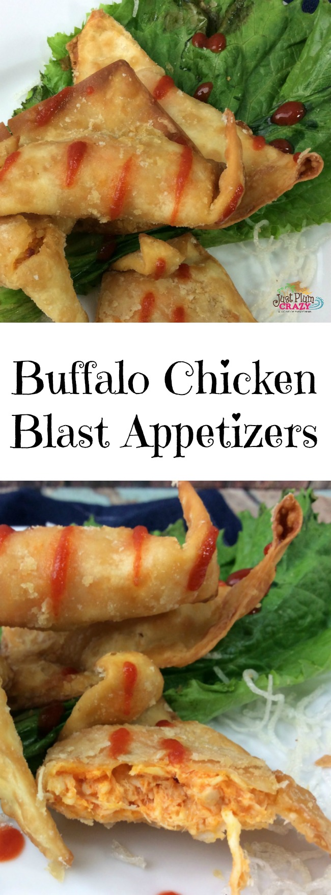 The Buffalo Chicken Blast Appetizers Recipe is made with rotisserie chicken, it's super easy to make and perfect for your game day party.