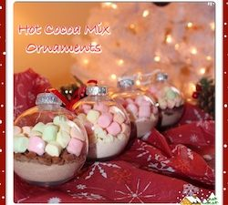 I made a Chocolate Raspberry, Chocolate Cinnamon, Pumpkin Spice and Chocolate Peppermint hot cocoa mix ornaments. I added chocolate chips & marshmallows.