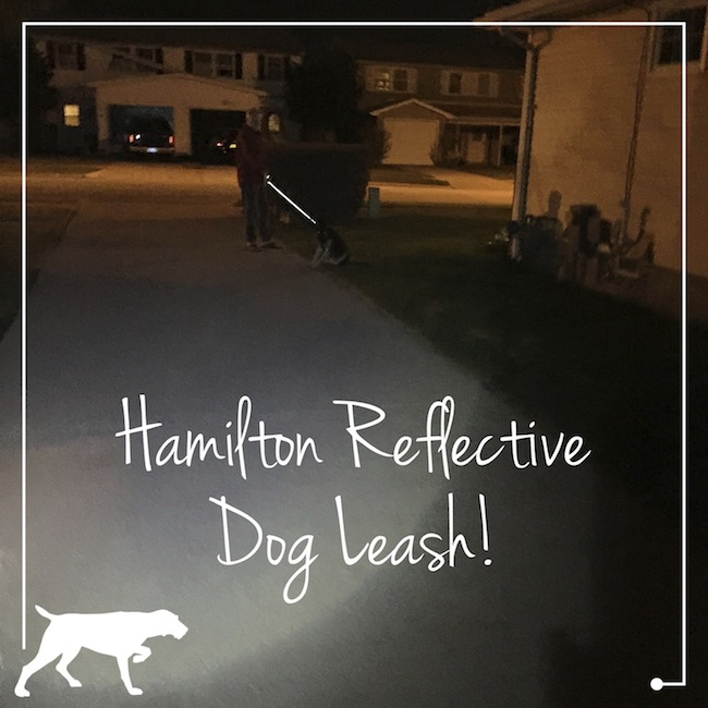 When walking the dog at night, we use the Hamilton Reflective Dog Leash in order to be seen in the dark. There is no doubt that cars will see us.
