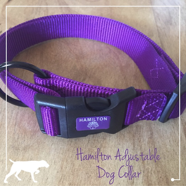 The adjustable dog collar is made of durable nylon. We ordered the large size for dogs with an 18 to 26 inch neck and she has plenty of room to grow.