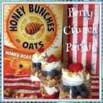 Berry Crunch Parfait Recipe!
