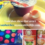 Lunchbox Ideas Without Sandwiches Day 9 #12DaysOf