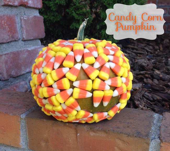 Pumpkin covered in candy corn