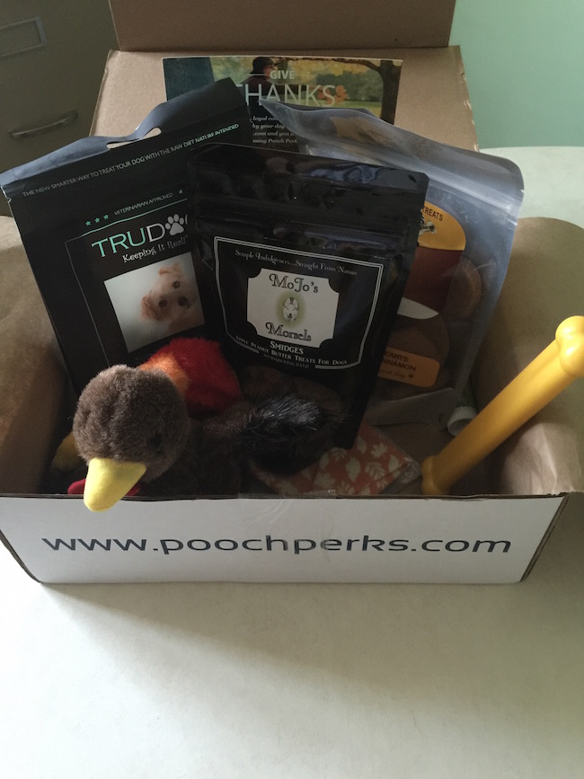 Pooch Perks is a different monthly subscription box because it isn't for you or your kids (they could be called your kids though)...it's for your pooch!
