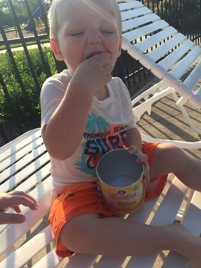 Gerber Lil' Beanies are baked & made from the goodness of navy beans & deliver 2 grams of protein,1 gr. of fiber & 10% Daily Value of Vitamin E per serving.