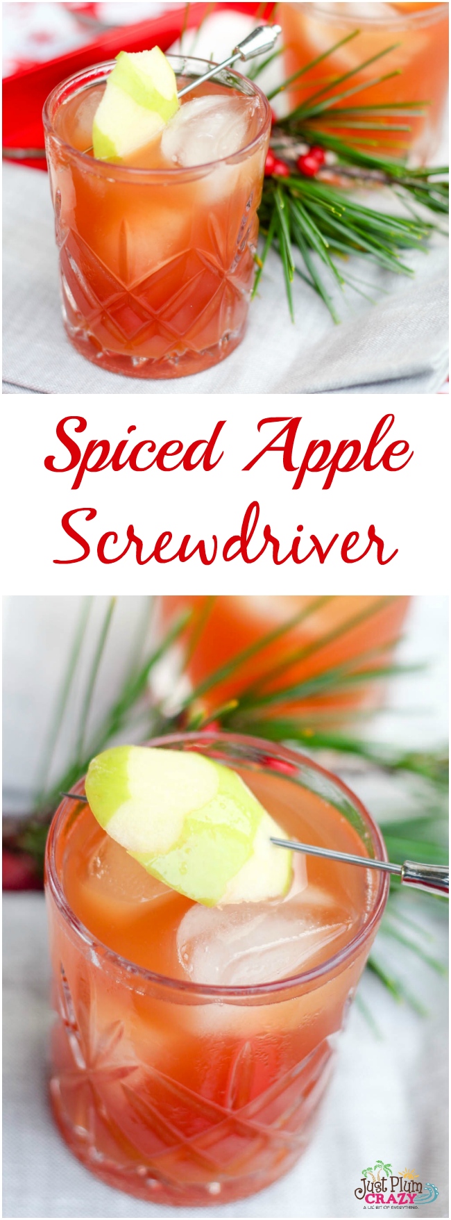 We are sharing with you a Spiced Apple Screwdriver recipe. It's sweet and sour at the same time but you and your friends and family are going to love it.