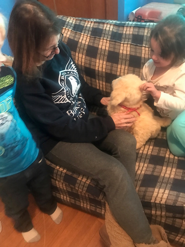 JOY FOR ALL™ Companion Pets Help Combat Loneliness