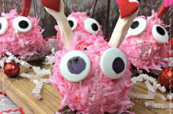 I may be impartial but I think the Valentine's Day Love Bug recipe is the cutest thing. The kid's love them when I send them into school with them.