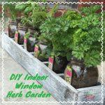 DIY Indoor Window Herb Garden