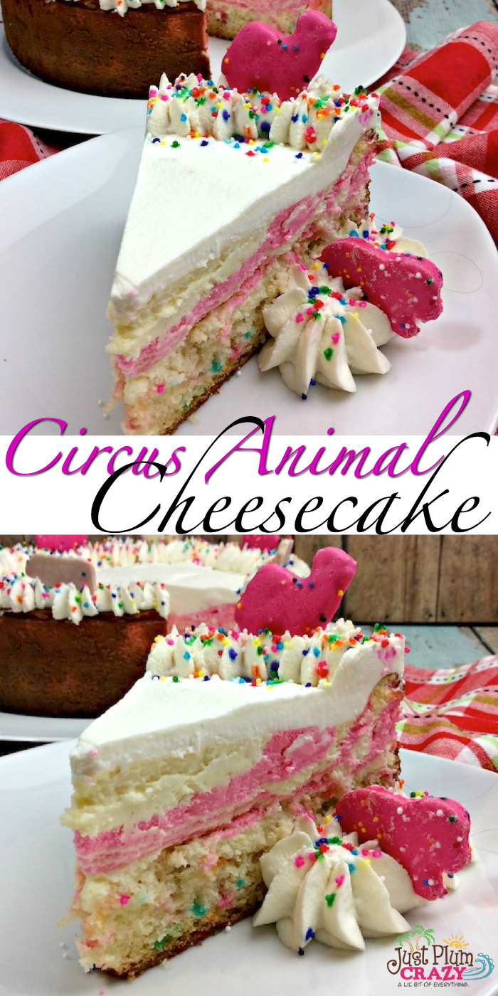 Our gorgeous Circus Animal Cheesecake is the perfect addition to any kids party! Bright, colorful and so yummy!