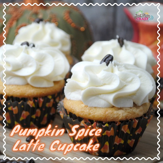 The best fall cupcakes featuring flavors of pumpkin spice and vanilla.