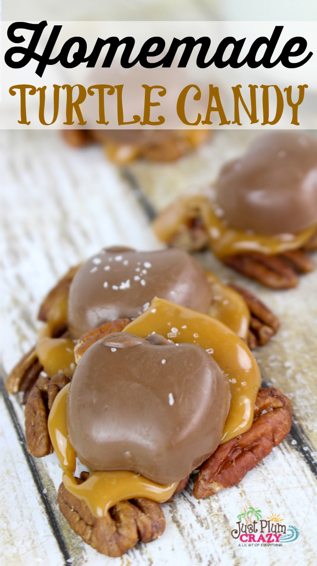 The Harvest Homemade Turtle Candy Recipe is made with pecans, Caramel Creams and chocolate for a taste that will keep you coming back for more.
