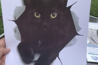 Black Cats are associated with Halloween and the Winston and Bear 3D Cat Decals Stickers are fun to decorate with whether it's Halloween or not.