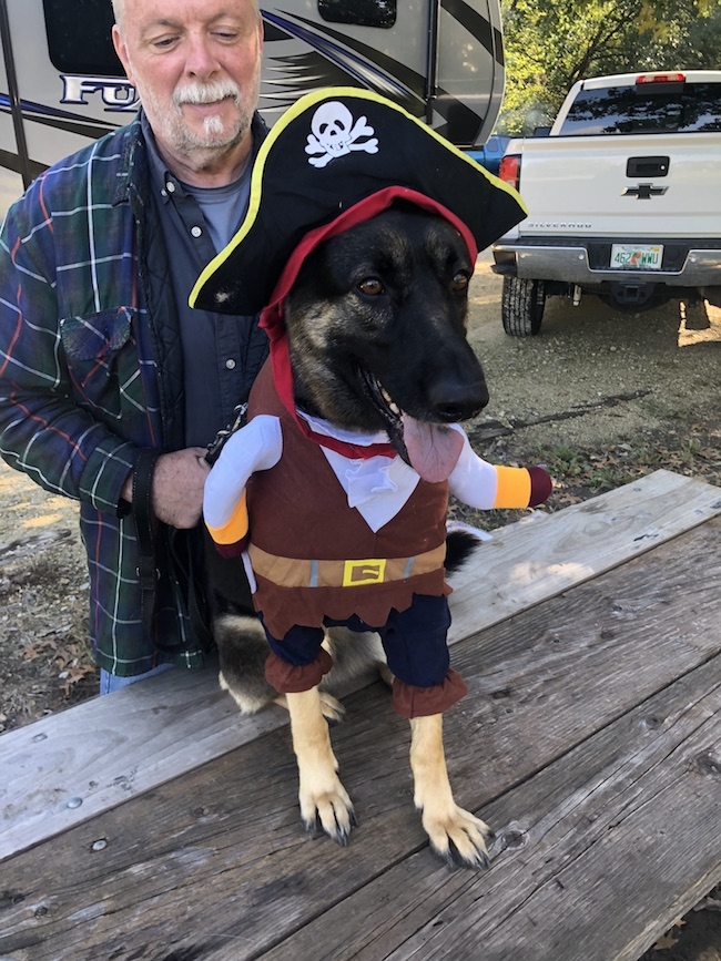 Whether you are looking for pet Halloween costumes for your dog or cat, you will surely find what you are looking for at Pet Krewe.